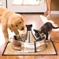Drinkwell 360 Stainless Steel Pet Fountain