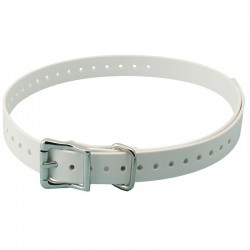 SportDOG Collar /White/